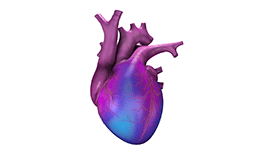 computer drawing of a heart