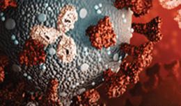 image of virus