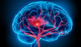 brain image with blue background