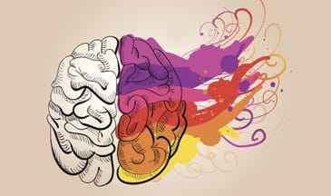 vector of plain vs. colorful brain