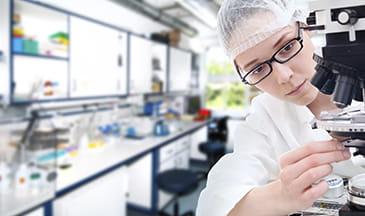 lab worker examining slides under a stethescope
